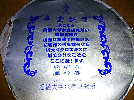 Image6425